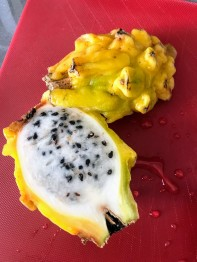 Pitaya - a tastier cousin of the dragonfruit