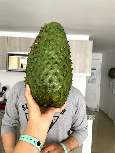Guanabana or Soursop - Steve's new favourite smoothie flavor.